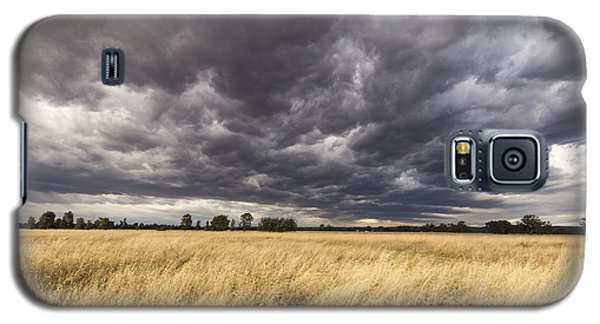 The Calm Before The Storm Galaxy S5 Case by Linda Lees