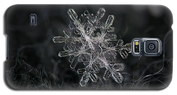 Snowflake Photo - January 18 2013 Grey Colors Galaxy S5 Case