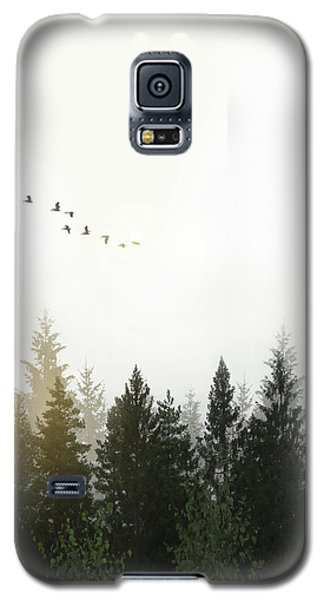 Galaxy S5 Case featuring the photograph Forest by Nicklas Gustafsson