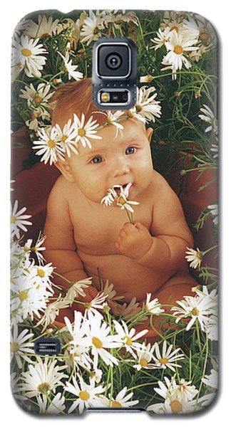 Daisy Galaxy S5 Case - Daisies by Anne Geddes