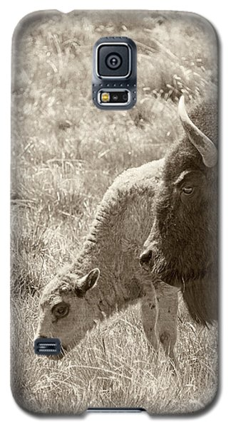Galaxy S5 Case featuring the photograph Father And Baby Buffalo by Rebecca Margraf