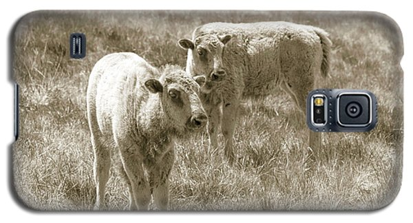 Galaxy S5 Case featuring the photograph Pair Of Baby Buffalos by Rebecca Margraf