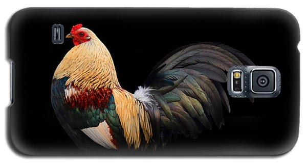 Im So Pretty Galaxy S5 Case by Paul Davenport