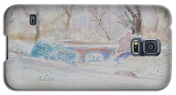 Central Park Record Early March Cold Circa 2007 Galaxy S5 Case