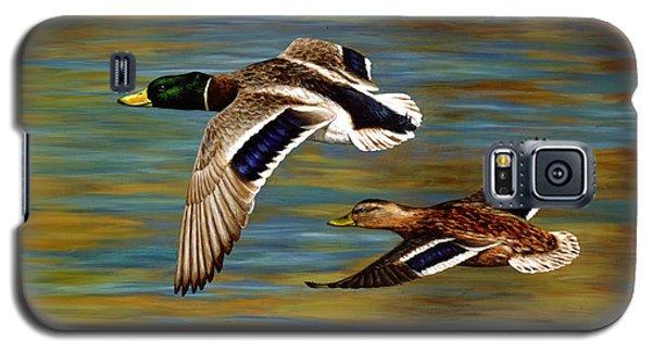 Golden Pond Galaxy S5 Case