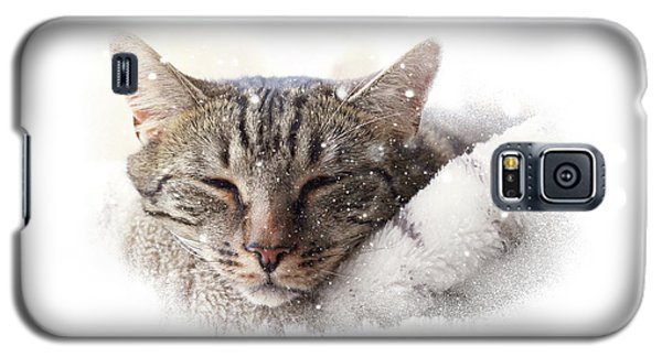 Cat And Snow Galaxy S5 Case
