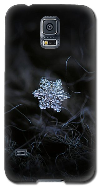 Real Snowflake - 2017-12-07 1 Galaxy S5 Case