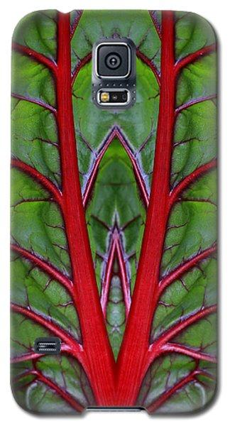 Leaf Of Life Galaxy S5 Case