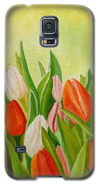 Colors Of Spring Galaxy S5 Case
