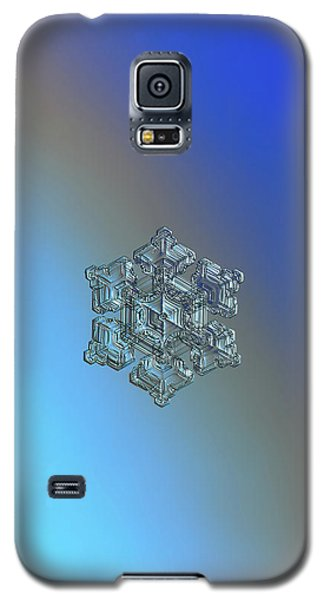 Real Snowflake - 05-feb-2018 - 5 Galaxy S5 Case