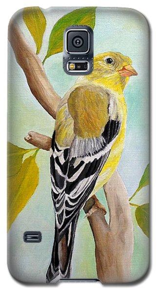 Pretty American Goldfinch Galaxy S5 Case