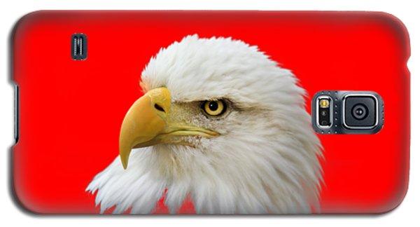 Eagle Eye Galaxy S5 Case by Shane Bechler