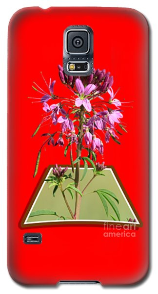 Rocky Mountain Bee Plant Galaxy S5 Case