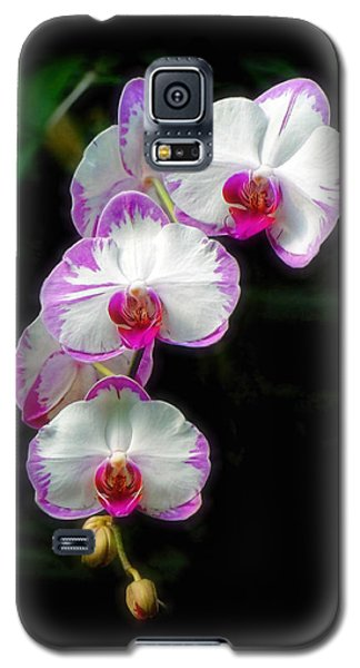 Cascading Orchid Beauties Galaxy S5 Case