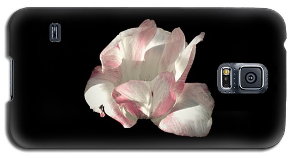 Galaxy S5 Case featuring the photograph Pretty In Pink by Photographic Arts And Design Studio