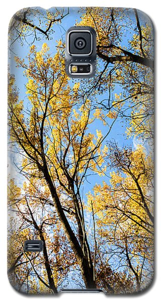 Galaxy S5 Case featuring the photograph Looking Up by Bill Kesler