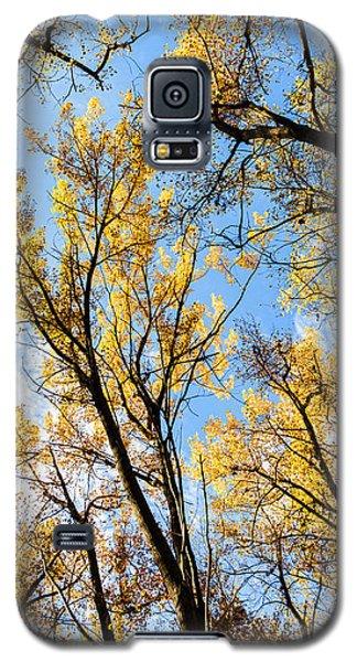 Looking Up Galaxy S5 Case by Bill Kesler