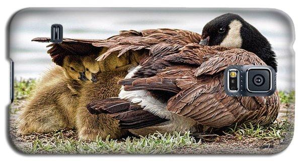 Under Mom's Wing Galaxy S5 Case