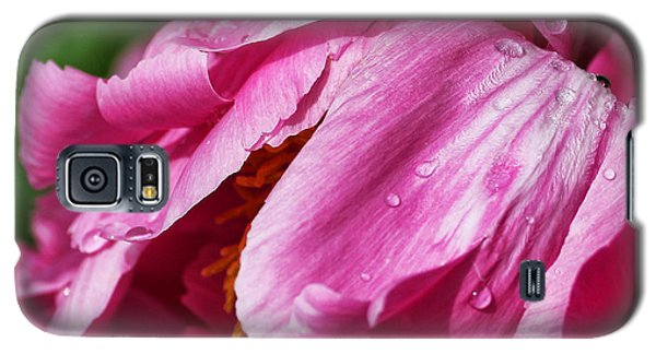 Galaxy S5 Case featuring the photograph Pink Delight by Bill Kesler