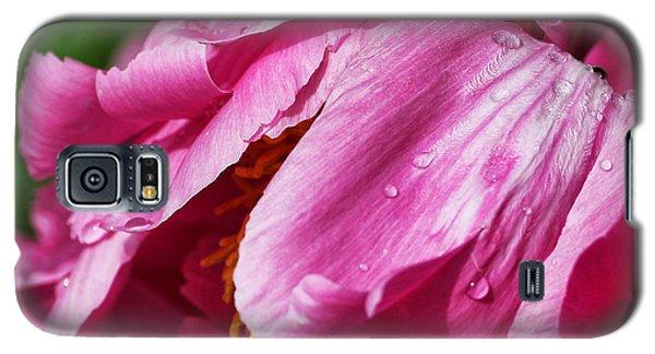 Pink Delight Galaxy S5 Case by Bill Kesler