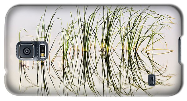 Galaxy S5 Case featuring the photograph Graceful Grass by Bill Kesler