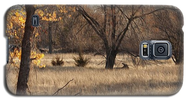 Galaxy S5 Case featuring the photograph Shades Of Autumn by Bill Kesler