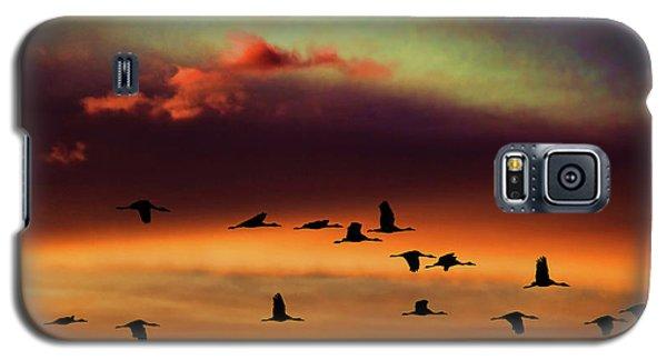 Sandhill Cranes Take The Sunset Flight Galaxy S5 Case
