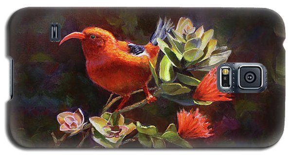Hawaiian IIwi Bird And Ohia Lehua Flower Galaxy S5 Case by Karen Whitworth