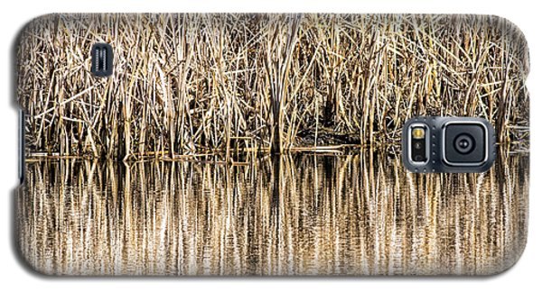 Golden Reed Reflection Galaxy S5 Case by Bill Kesler