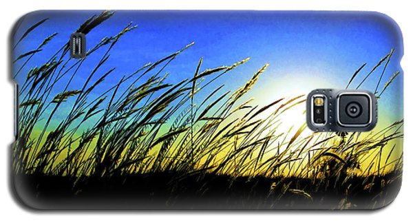 Tall Grass Galaxy S5 Case by Bill Kesler