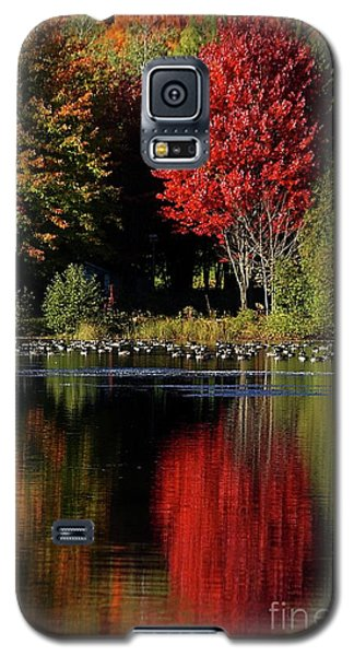Galaxy S5 Case featuring the photograph As Red As It Can Be by Aimelle