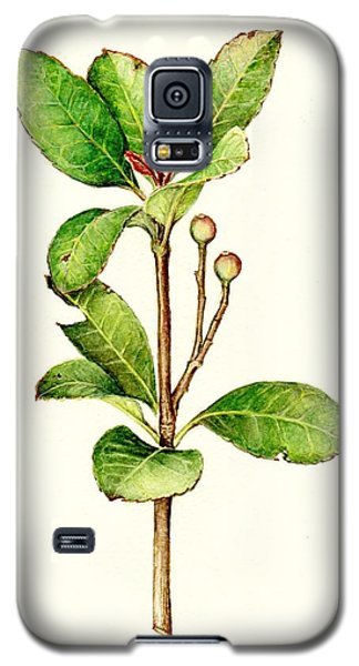 Galaxy S5 Case featuring the painting As The Twig Is Bent The Tree Inclines. by Heidi Kriel
