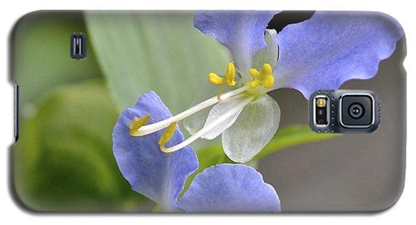 Virginia Dayflower Pair Galaxy S5 Case