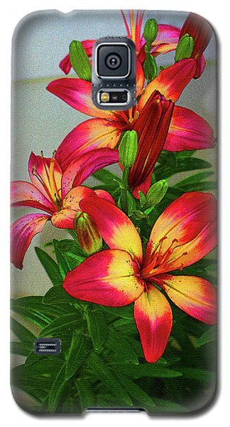 Asian Lilly Spring Time Galaxy S5 Case