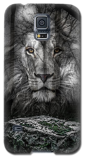 Aslan And The Stone Table Galaxy S5 Case