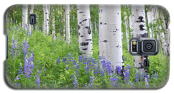Aspen And Lupine Galaxy S5 Case