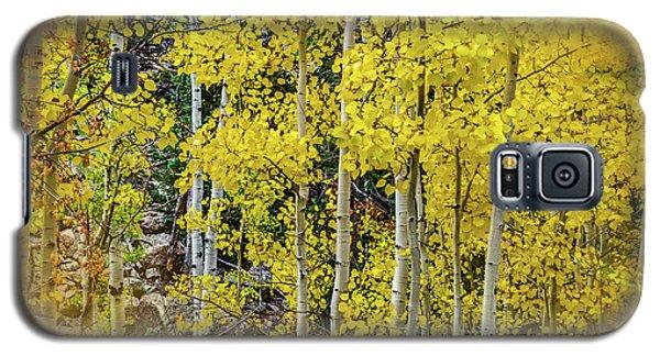 Galaxy S5 Case featuring the photograph Aspen Autumn Burst by Bill Gallagher