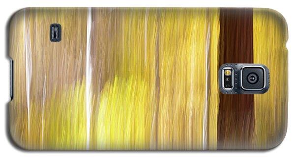 Aspen Blur #1 Galaxy S5 Case
