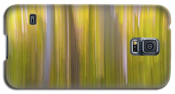 Aspen Blur #6 Galaxy S5 Case