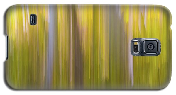 Aspen Blur #6 Galaxy S5 Case