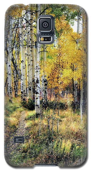 Galaxy S5 Case featuring the photograph Aspen Clone by Jim Hill