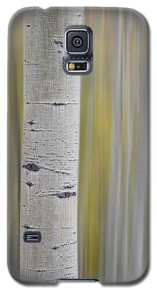 Aspen Galaxy S5 Case by Gary Lengyel