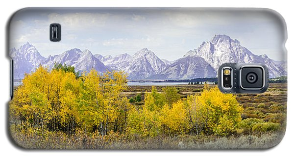 Aspen Gold In The Tetons Galaxy S5 Case