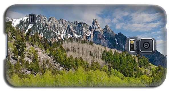 Galaxy S5 Case featuring the photograph Aspen Grove Below The Ophir Needles by Jeff Goulden