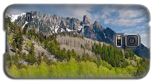 Aspen Grove Below The Ophir Needles Galaxy S5 Case