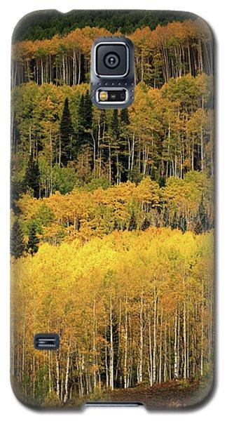 Aspen Groves Galaxy S5 Case