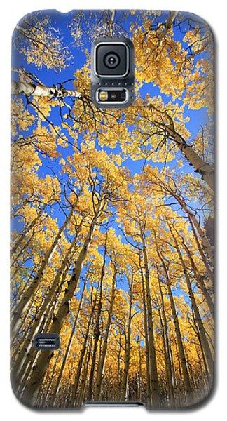Aspen Hues Galaxy S5 Case