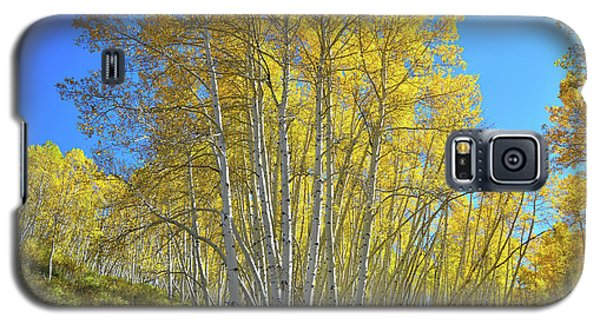 Galaxy S5 Case featuring the photograph Aspen Lane by Ray Mathis