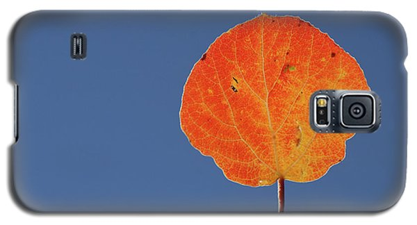 Aspen Leaf 1 Galaxy S5 Case