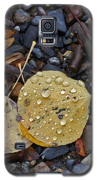 Aspen Leaf Galaxy S5 Case